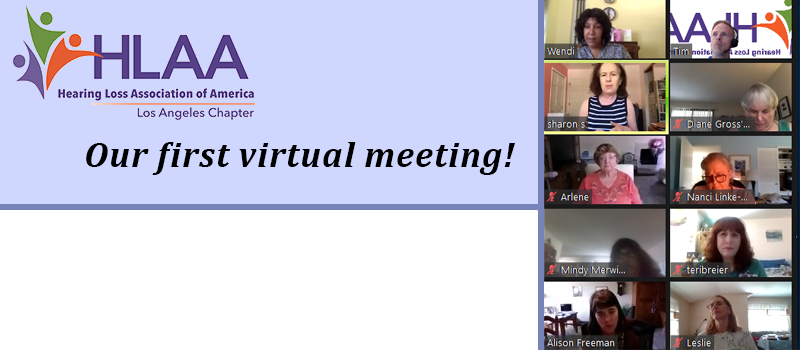 LA Chapter First Virtual meeting